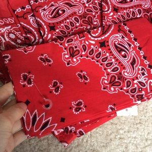 Urban Outfitters Accessories - Paisley Cowboy Bandanas or made into masks cotton